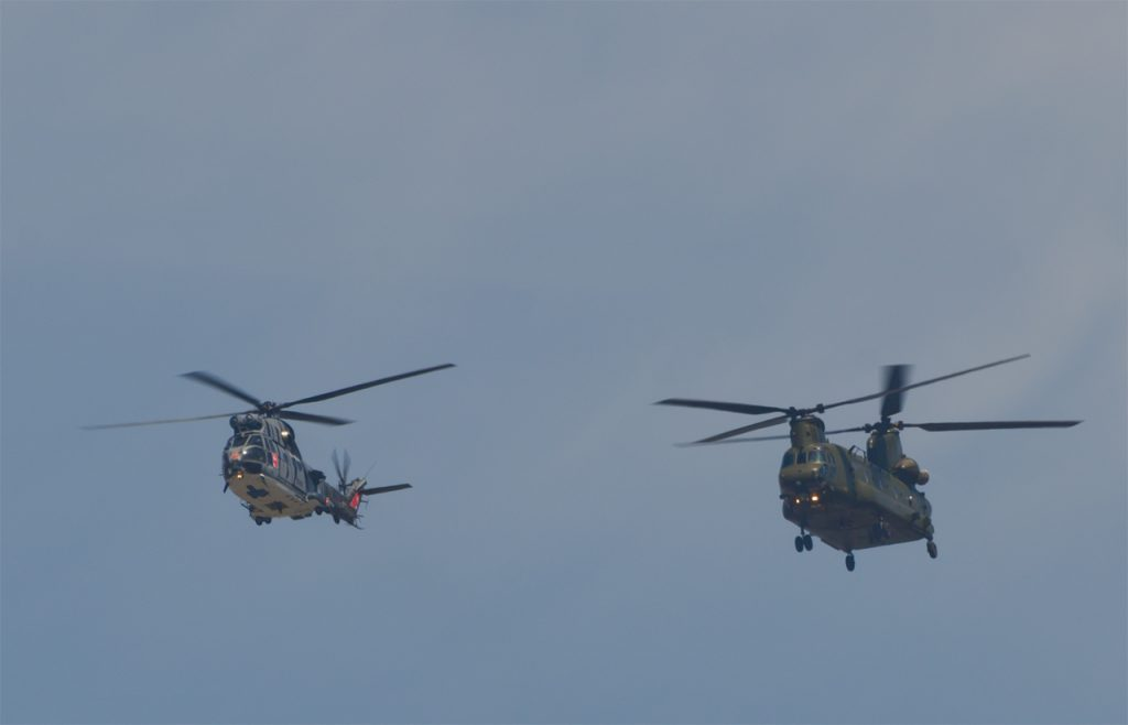 Puma and Chinook