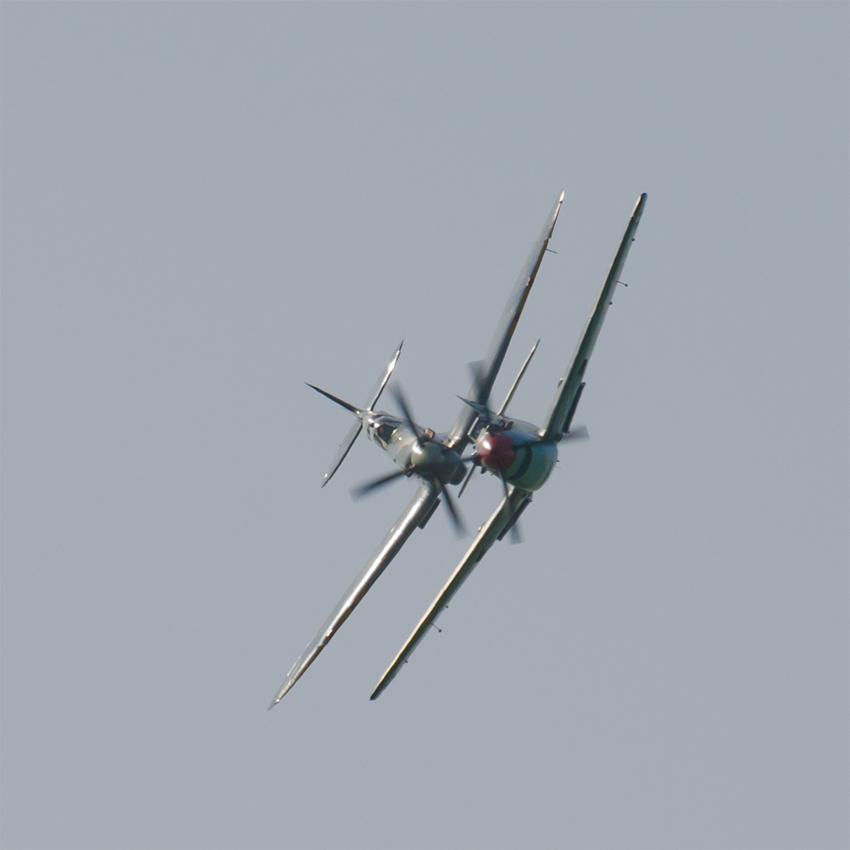 Spitfire and Buchon